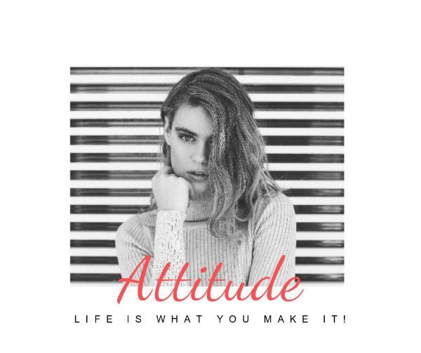 attitude_wl_20170315