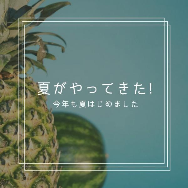 菠萝_copy_hzy_170118_13