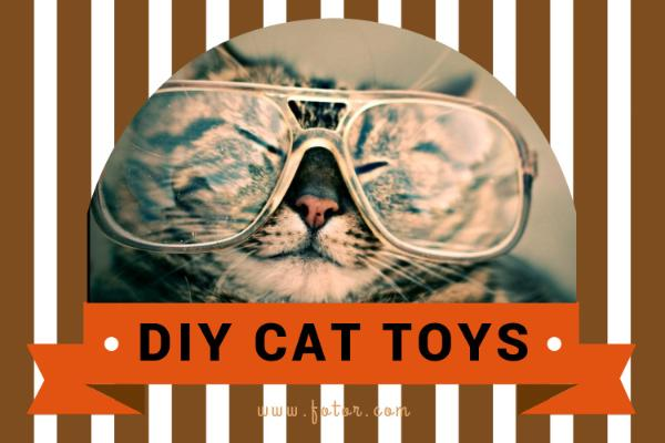 DIY CAT TOYS_copy_CY_20170212