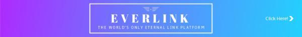 EVERLINK _copy_CY_20170124