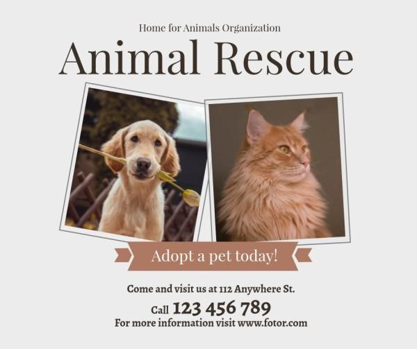 animal-tm-210425-同步