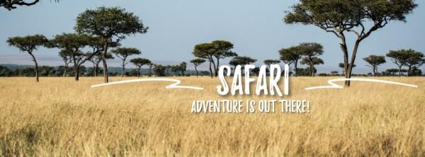safari_lsj_20210219_tm同步