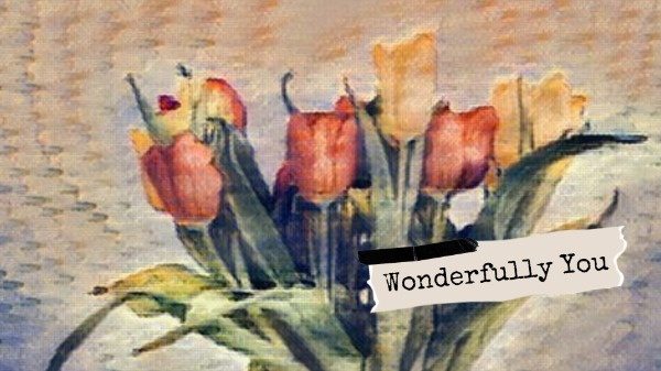 wonderful_wl_20191223