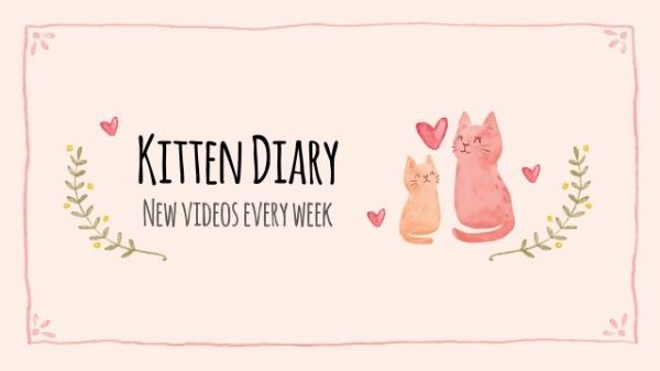 kitten diary_yca_lsj_20180831