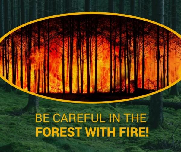 森林火灾_tm_20200721