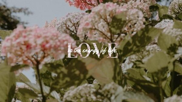 love_wl_20190911