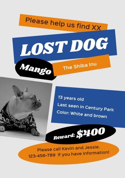 lost dog-tm-210315