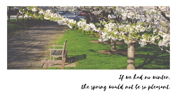 the spring_wallpaper_lsj20180408