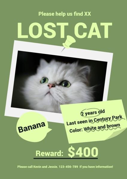 lost cat-tm-21035