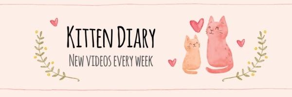 kitten diary_lsj_20180831