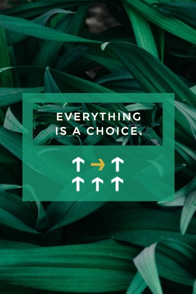 choice2_wl_20181119