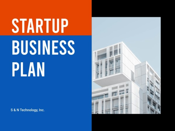 创业计划_ls_20200601