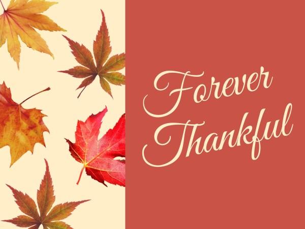 thankful_wl_20201109