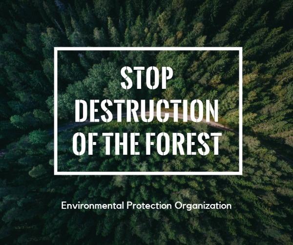 保护森林_tm_20200721