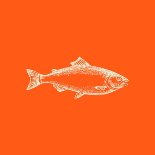 fishing_lsj_20190829