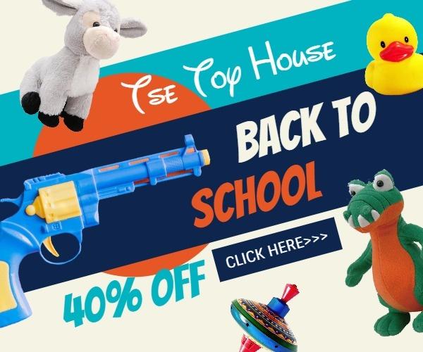 toy_wl_20190718
