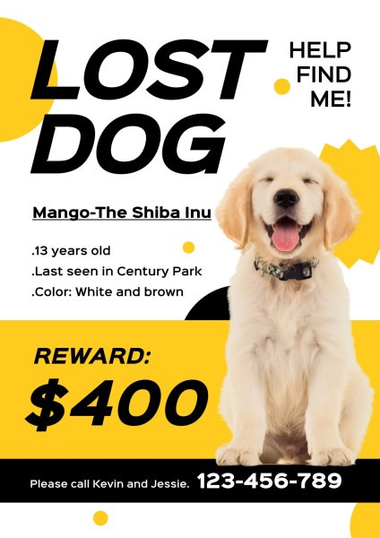 lost dog-tm-21035