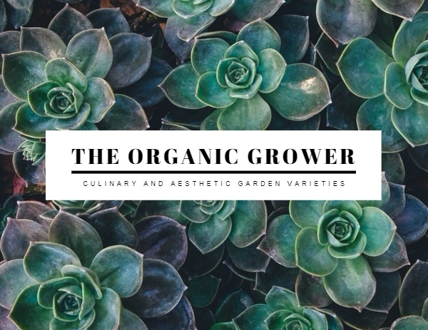 organic_wl20180418