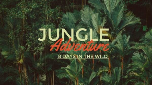 jungle_wl_20190118