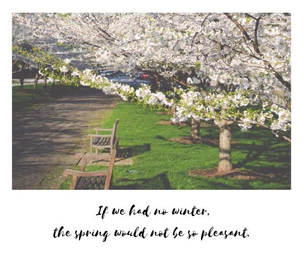 the spring_fp_lsj20180408