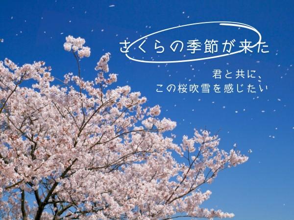 季节_wl_20210222