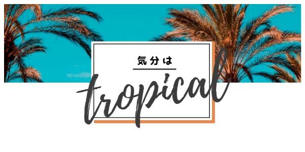 tropical_wl20180424