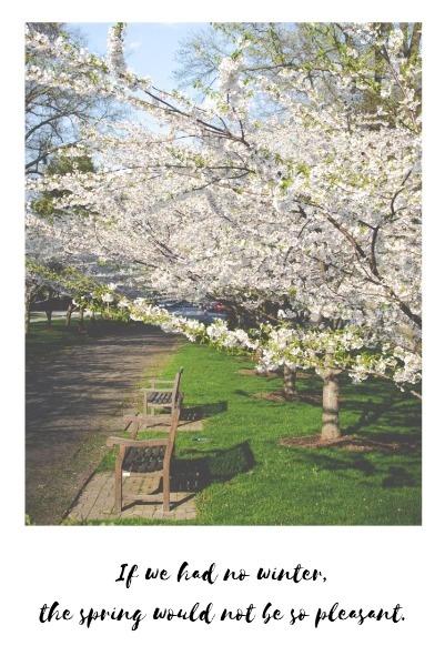 the spring_p_lsj20180408