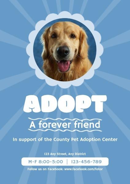 adopt_lsj_20200109