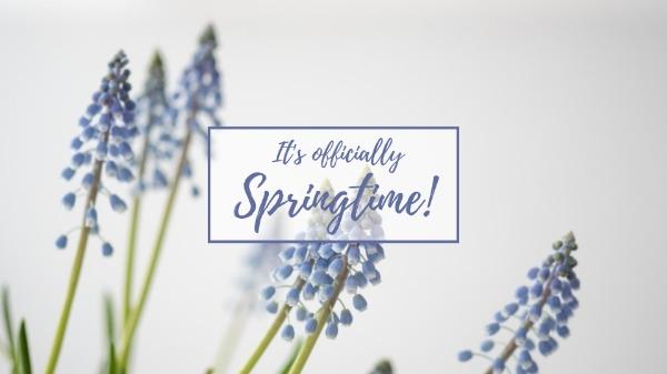 springtime_resize20180312
