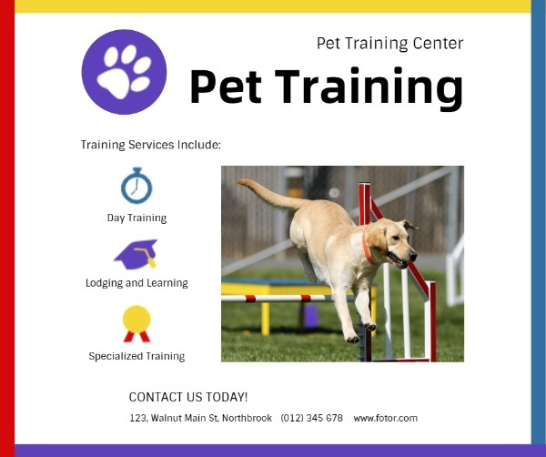 pet training_lsj_20190823