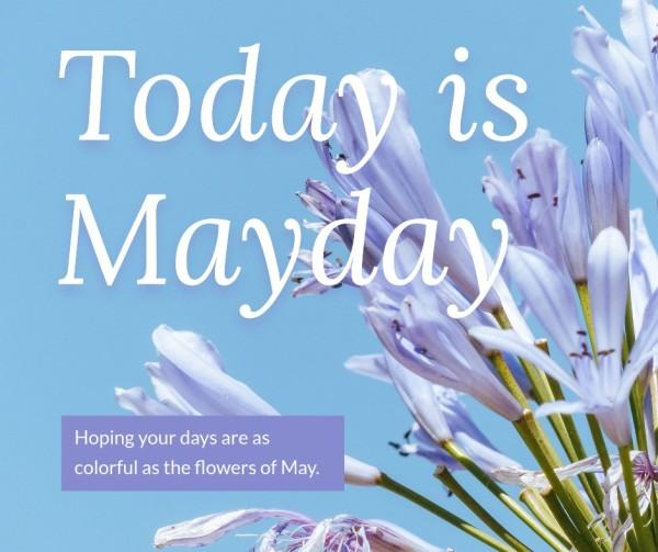 mayday_wl_20210322