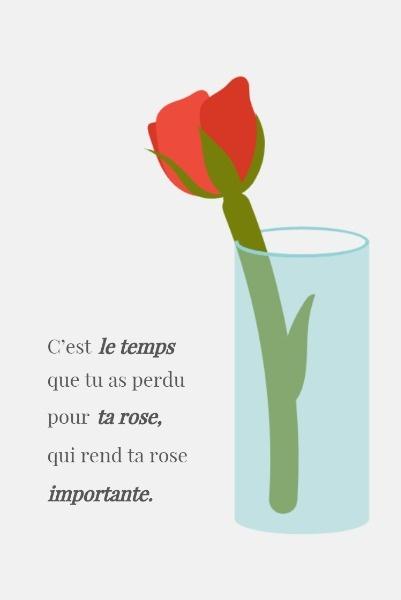 rose_lsj_20190731