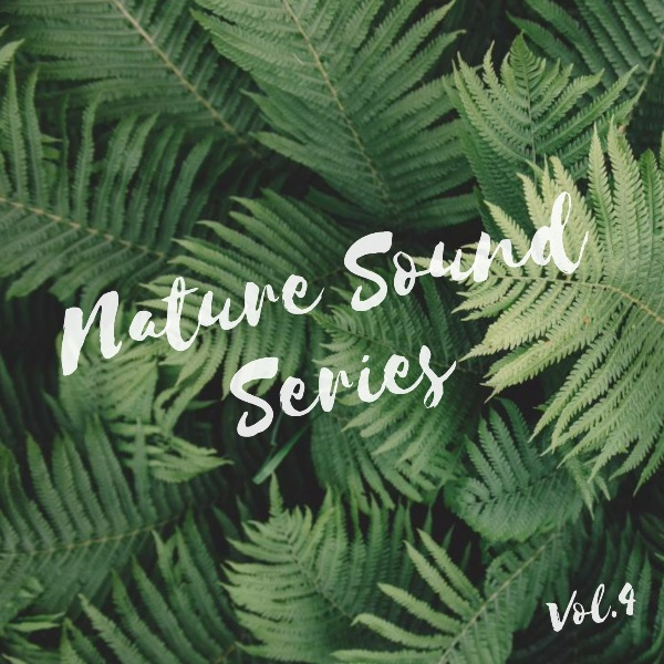 nature sound_lsj20180427