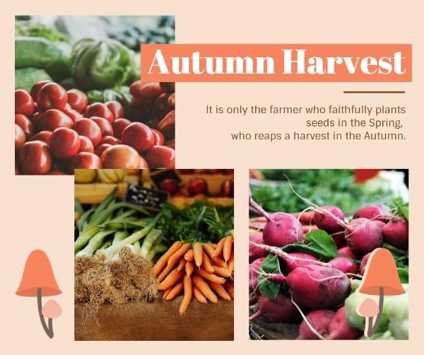 harvest_lsj_20181106