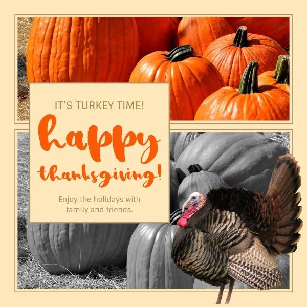 turkey_wl_20191017