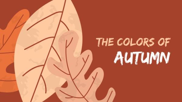 autumn_colors_lsj20171113