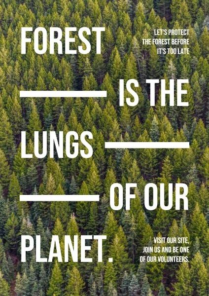 forest_lsj_20200722