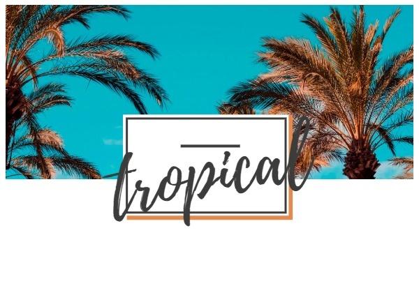 tropical_lsj_20180614