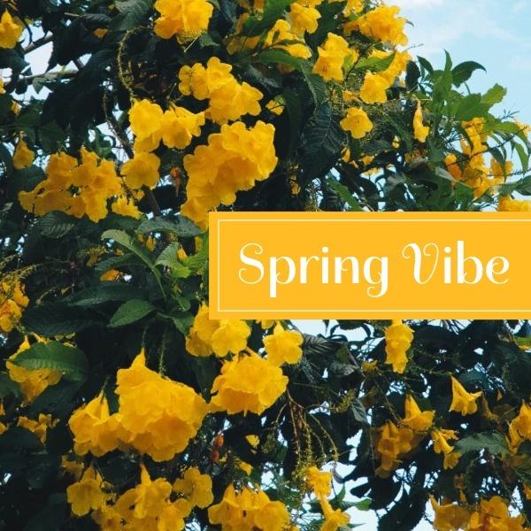 spring_lsj_20200715