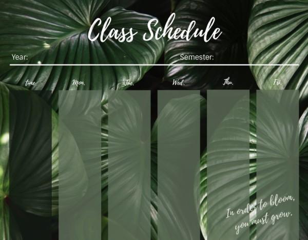 12class schedule_植物_wl