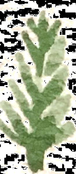 https://pub-static.fotor.com/assets/res/sticker/111968fc-8753-412e-ad2c-d95176cde2a7_thumb.png