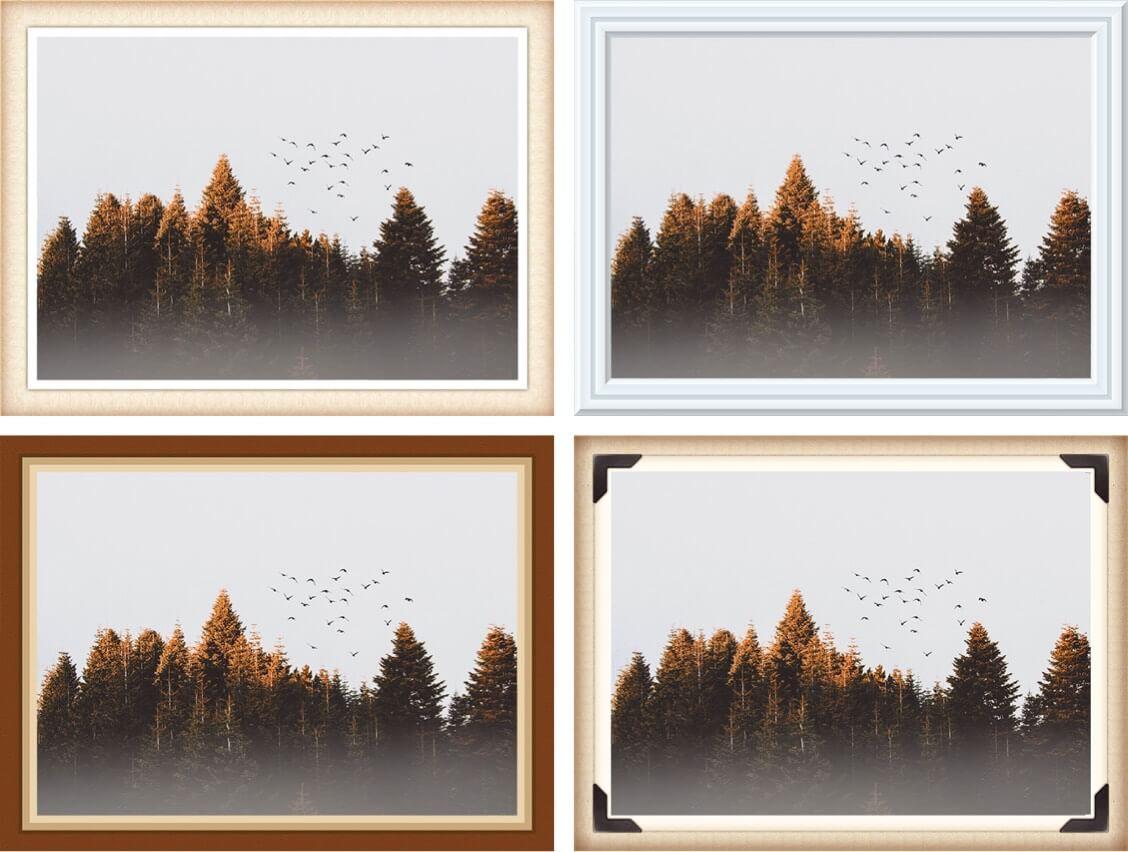 фото деревьев с разными рамками