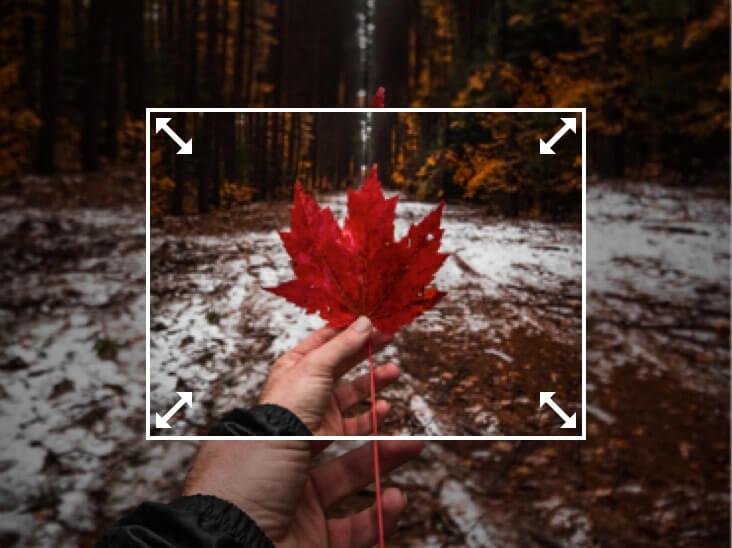 GoArt-Effect-of-Fotor-Photo-Editor