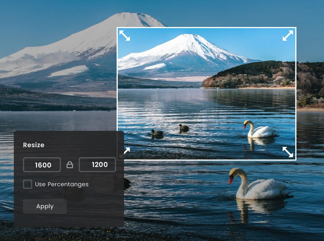 富士山からの縮小画像