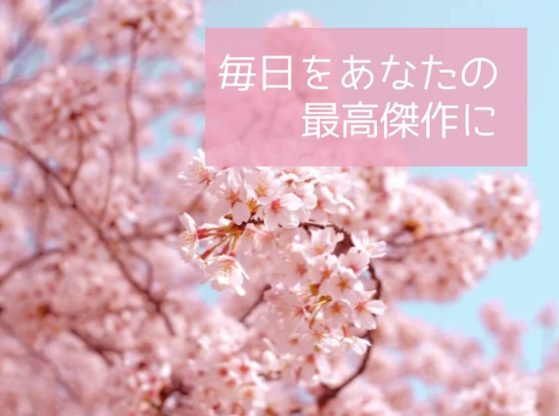 屋外の桜の写真にテキストを追加する